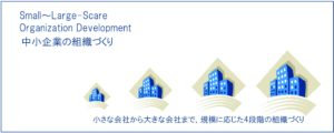 small to large Organizational Development